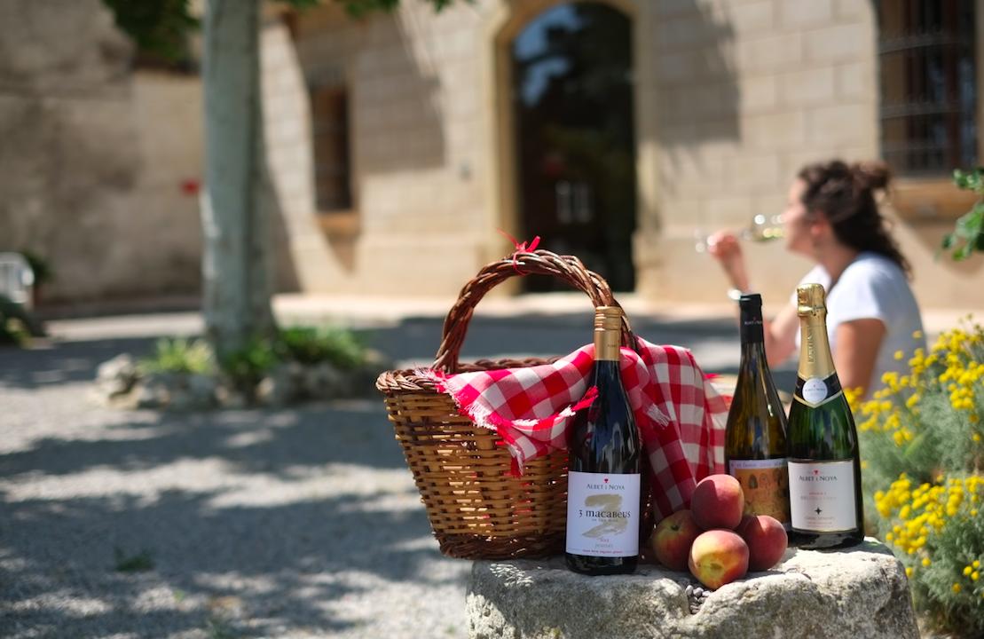 Maridaje de vinos Albet i Noya con Melocotones d'Ordal