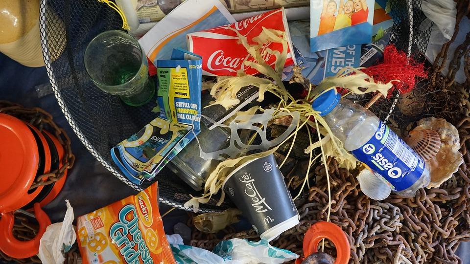 Desperdicio alimentario /Imagen de Pixbay