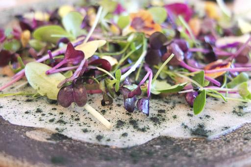 Carpaccio de Kohlrabi, pistachos y espirulina / / Foto: Godo Chillida para Los Foodistas©